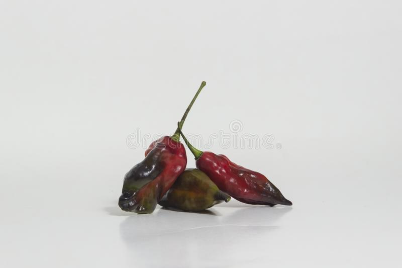 Limo chili still life - Set of different colors at the same plant. The Aji Limo is a strong chili that is used in Peruvian cuisine. As a seasoning for spicy royalty free stock photos