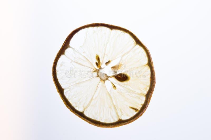 Limon photos stock