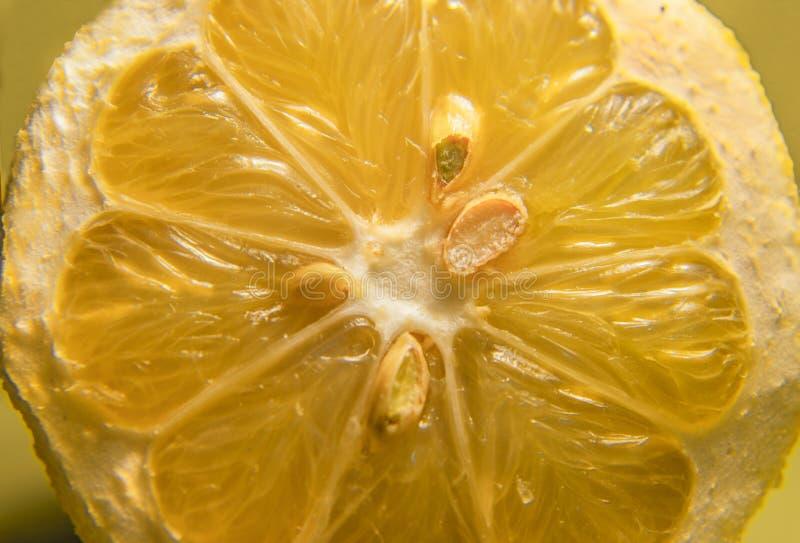 Limon royaltyfri fotografi