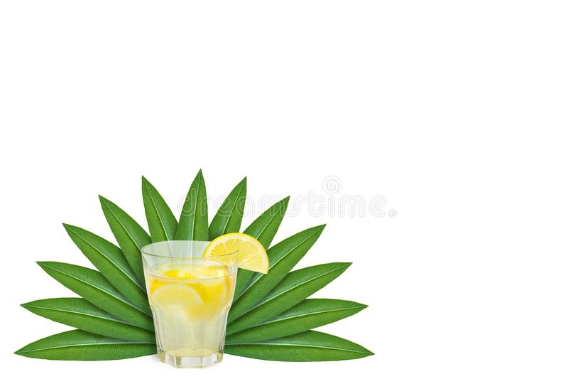 Limonada con el limón cortado en el fondo de hojas verdes Aislado en blanco noción del origen natural imagenes de archivo