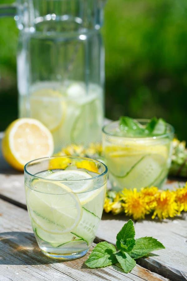 Limonada de restauración del detox del pepino, del limón y de la menta imagenes de archivo