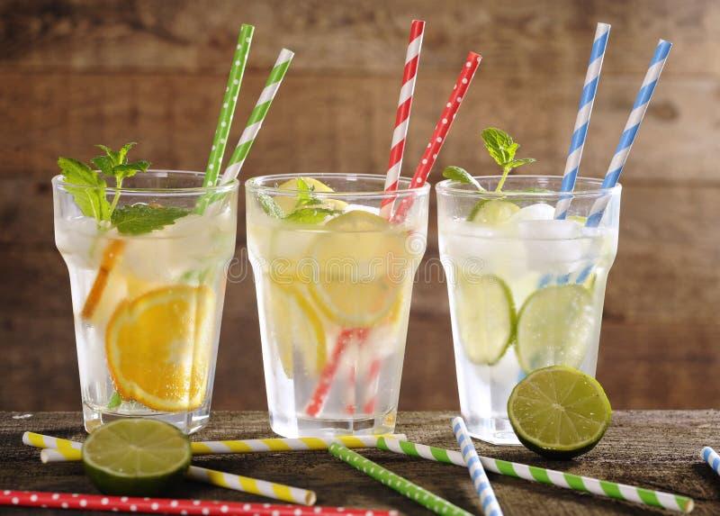 Limonada fresca com frutos com palhas coloridas fotografia de stock royalty free