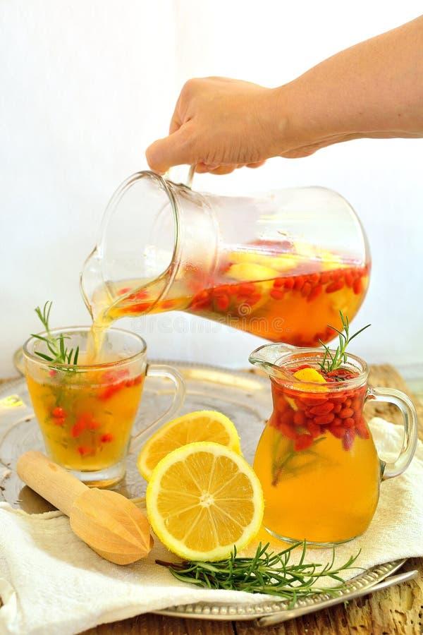 Limonade avec les baies et le romarin de goji photographie stock