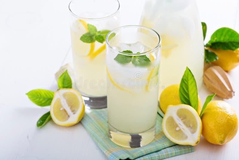 Limonata casalinga in vetri alti fotografia stock