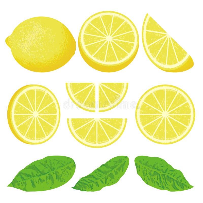 Limone illustrazione di stock