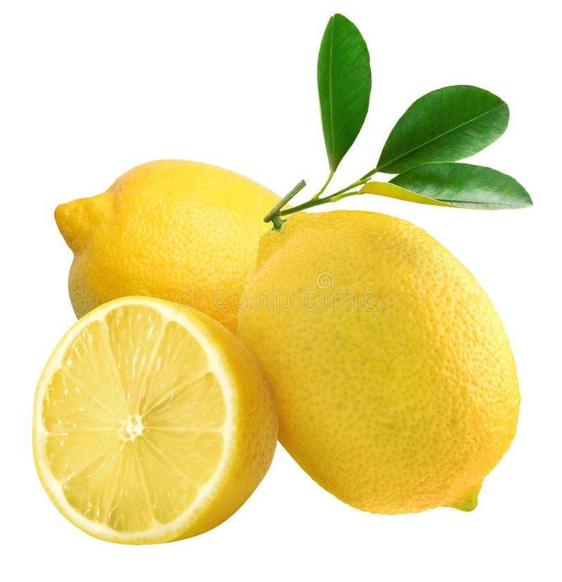 Download Limone fotografia stock. Immagine di alimento, mezzo, foglio - 7314072