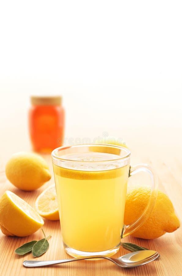 Limone caldo fotografia stock