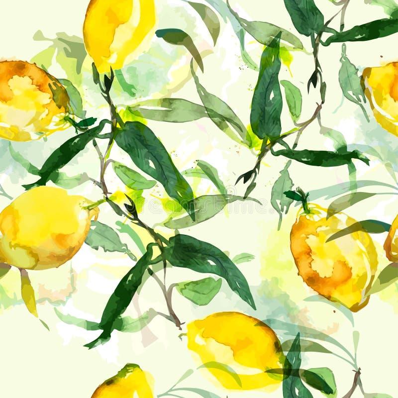 Limone disegnato a mano della pittura dell'acquerello illustrazione vettoriale