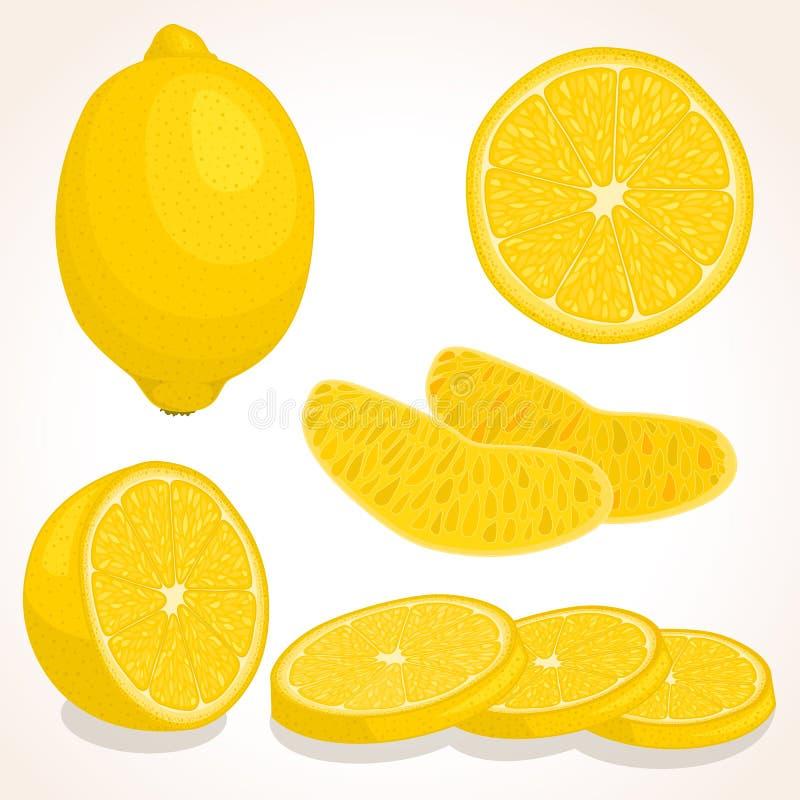 Limone fresco di vettore Limone affettato, intero, mezzo royalty illustrazione gratis