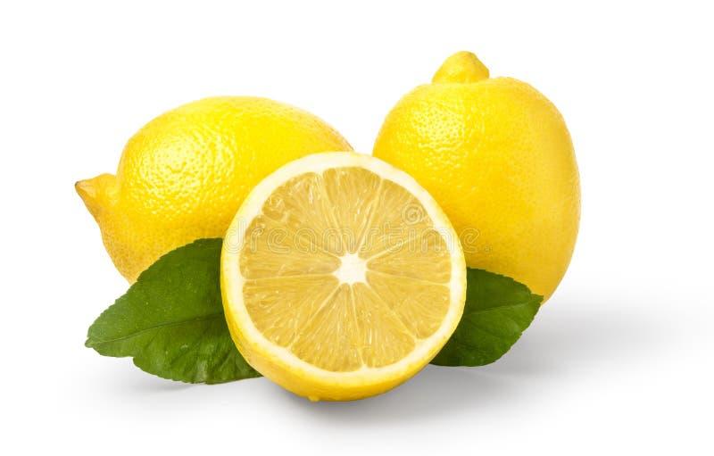 Limone isolato su bianco immagini stock libere da diritti
