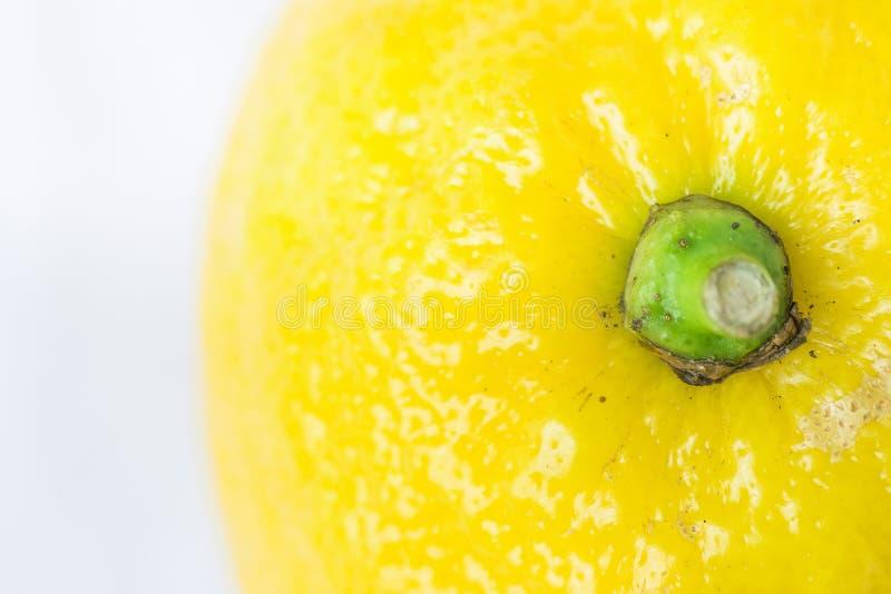 Limone organico giallo luminoso su fondo bianco Macro imperfezioni visibili di struttura su buccia immagini stock