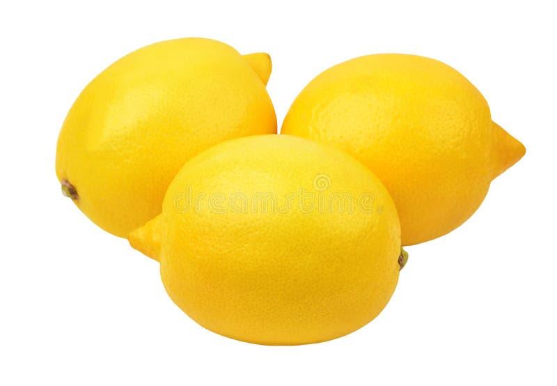Limone su bianco fotografia stock libera da diritti