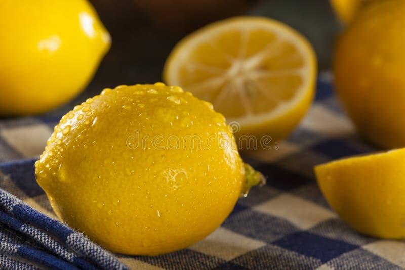 Limones amarillos orgánicos de la fruta cítrica fotografía de archivo libre de regalías