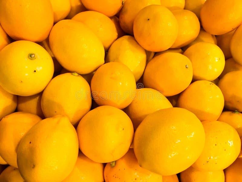 Limones brillantes oblongos maduros deliciosos hermosos de la vitamina amarga dulce natural amarilla, anaranjada, frutas, fruta c imagen de archivo
