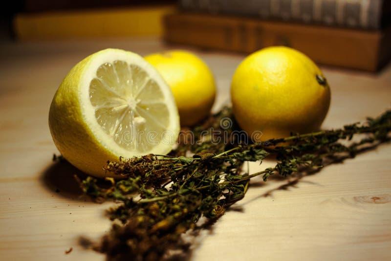 Limones e hierbas fotografía de archivo