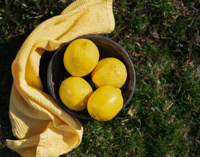 Limones en un cuenco en el aire abierto imagen de archivo