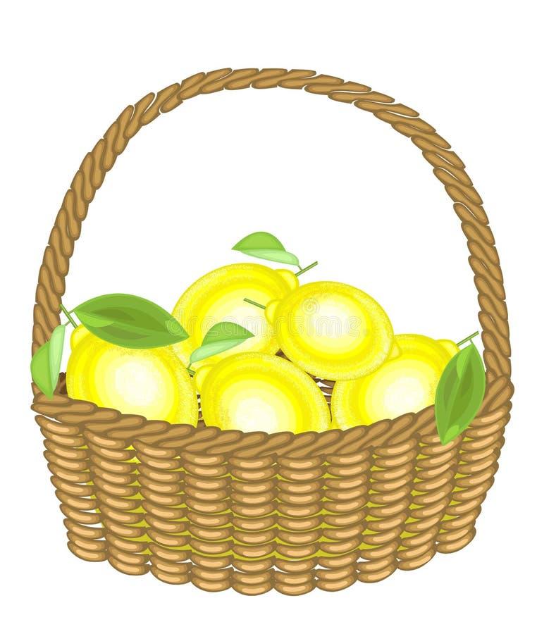 Limones jugosos frescos de la cosecha abundante en una cesta La fruta es sabrosa y fragante La invitación refinada es buena para  ilustración del vector