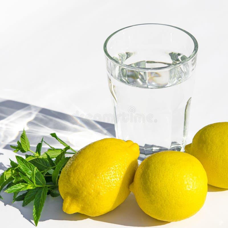 Limones, menta verde fresca y un vidrio de cristal con agua en un fondo blanco foto de archivo libre de regalías