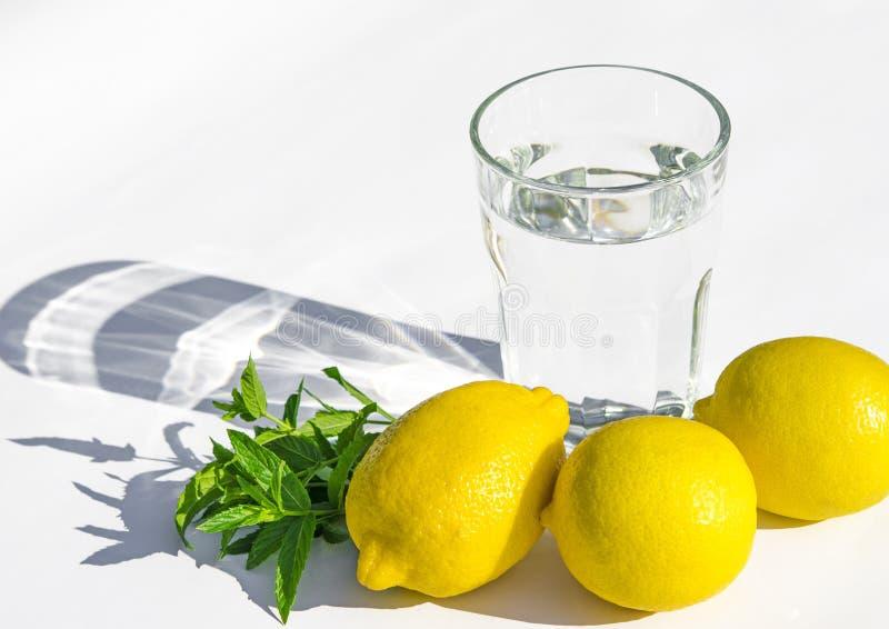 Limones, menta verde fresca y un vidrio de cristal con agua en un fondo blanco imágenes de archivo libres de regalías
