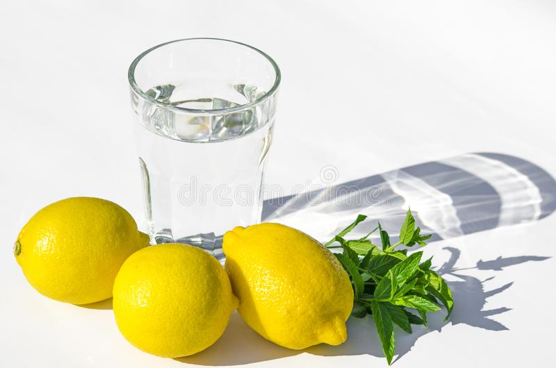 Limones, menta verde fresca y un vidrio de cristal con agua en un fondo blanco Sombras en un fondo blanco fotografía de archivo libre de regalías