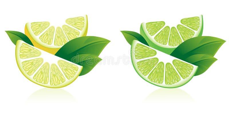 Limones, naranjas y cales ilustración del vector