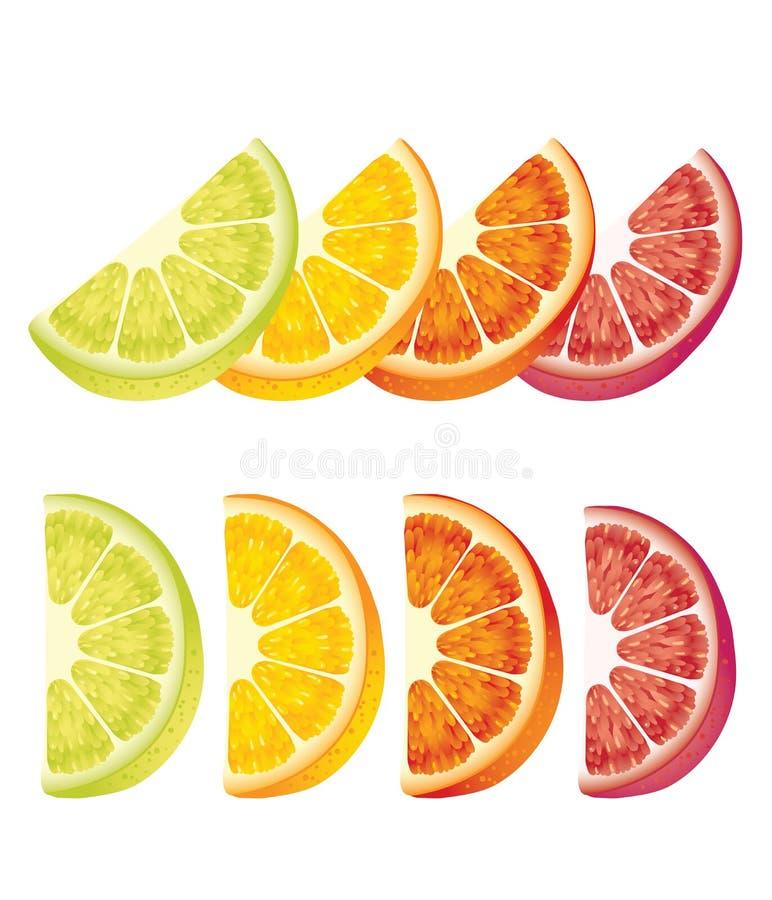 Limones, naranjas y cales libre illustration