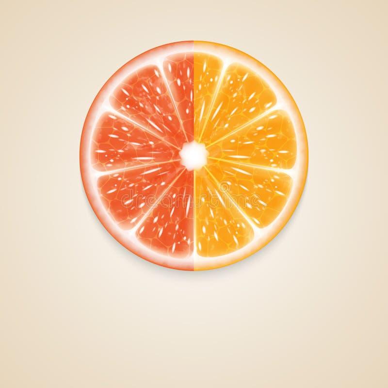 Limones y cal stock de ilustración