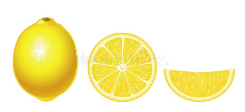 Limoni isolati (complesso) royalty illustrazione gratis