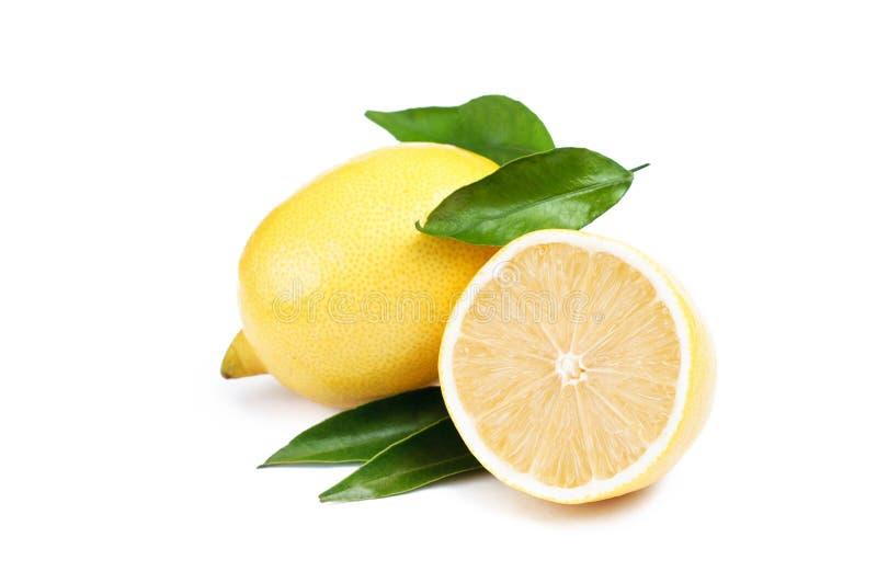 Limoni maturi freschi Vista superiore Isolato su priorità bassa bianca fotografia stock libera da diritti