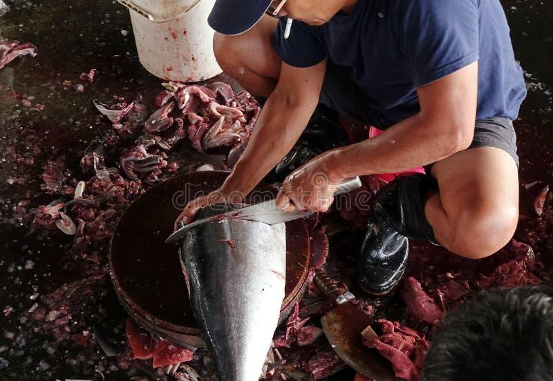 Limpando e cortando Tuna Fish imagem de stock royalty free