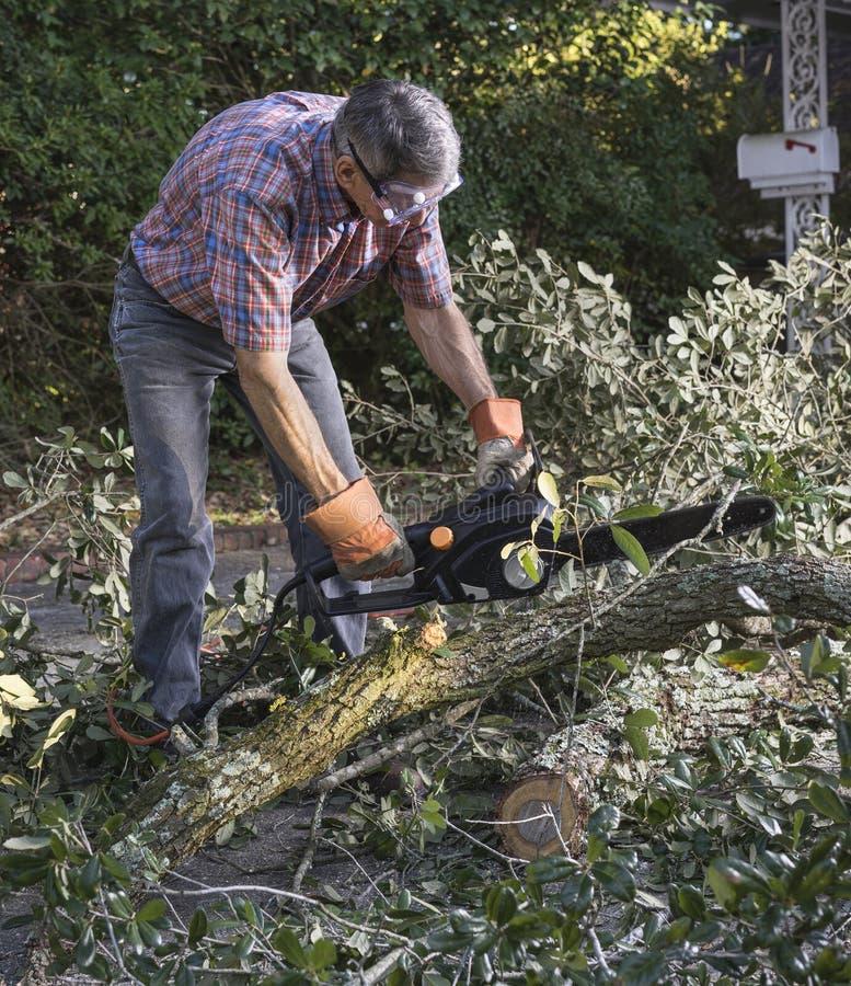Limpando a jarda após uma tempestade imagem de stock