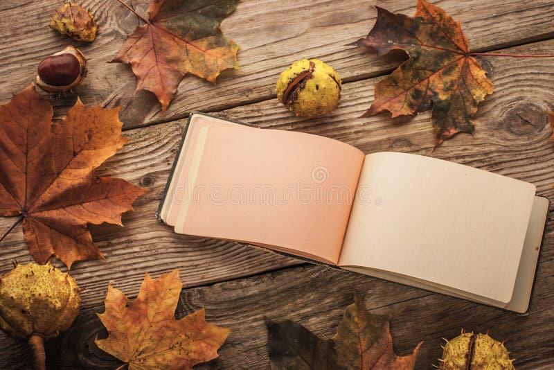 Limpe o caderno aberto do vintage cercado pelas folhas de bordo e pelas castanhas com o efeito do filtro do filme foto de stock
