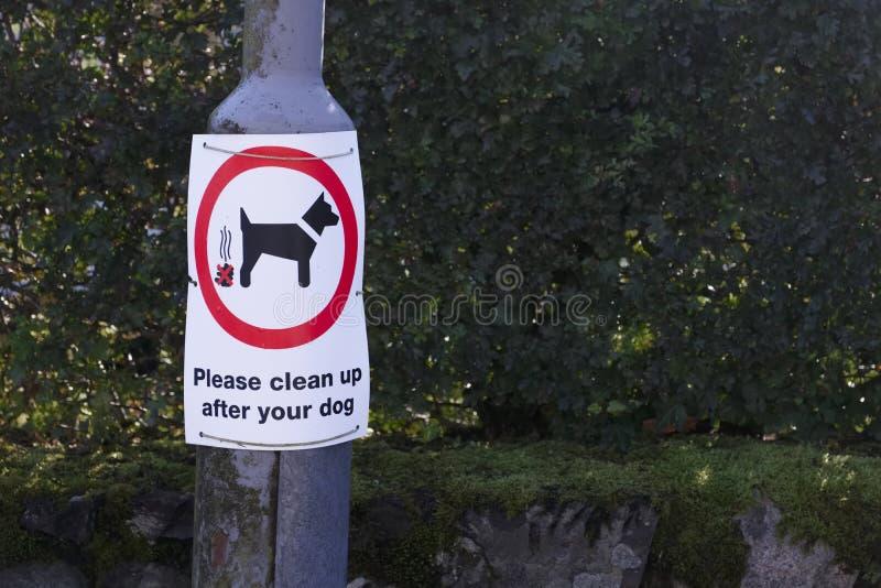 Limpe por favor após seu sinal do cão no cargo da lâmpada fotos de stock royalty free