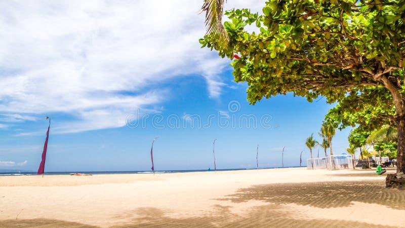 Limpe a praia tropical da areia com a árvore e a sombra fotografia de stock