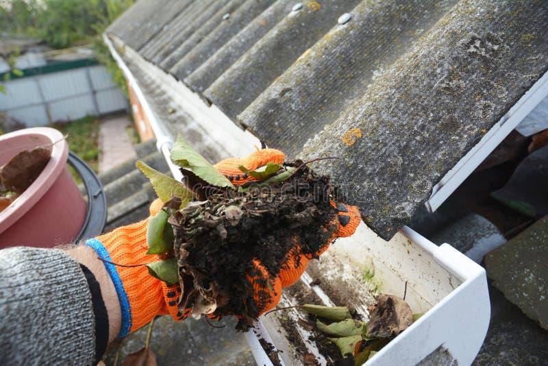 Limpeza da calha da chuva Folhas de escavação da calha Limpe e repare calhas e Downspout da chuva com mãos do roofer imagem de stock