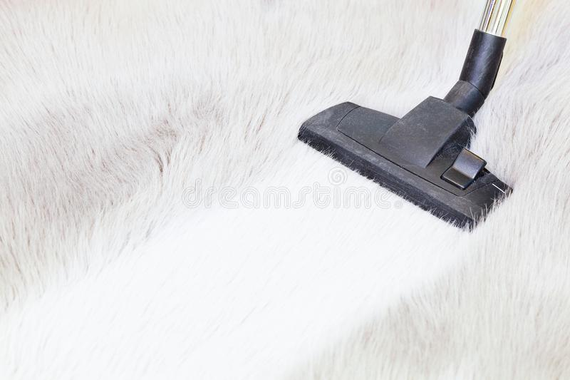 Limpeza do tapete da pele do falso com aspirador de p30 foto de stock