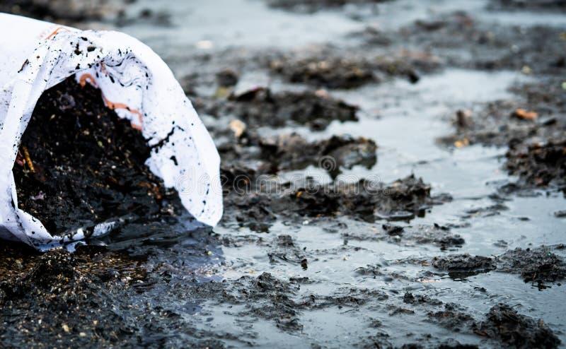 Limpiador que recoge la basura en la playa del mar adentro al bolso blanco Bolso de los voluntarios que limpian la basura en la p fotografía de archivo