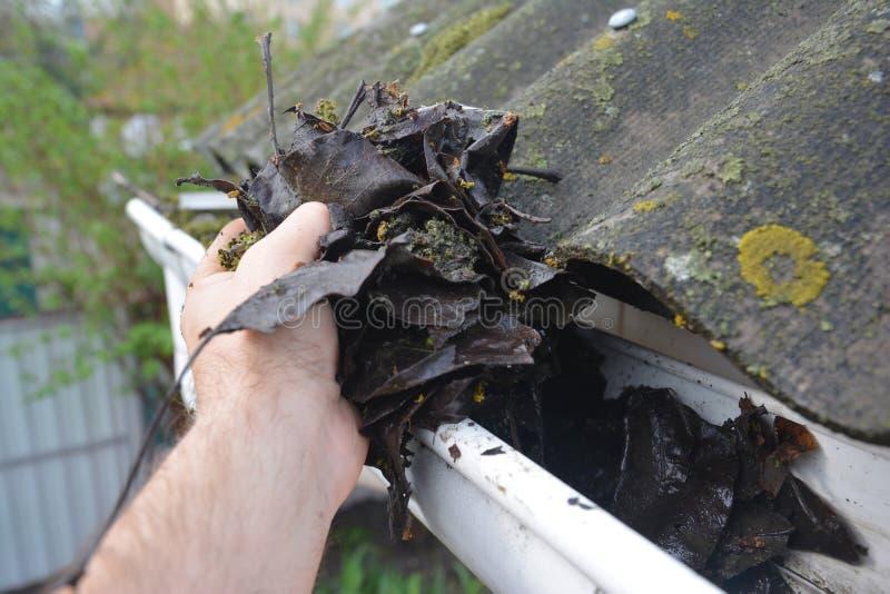 Limpiando la alcantarilla de lluvia de hojas en primavera Consejos para la limpieza de los puentes de techo Limpie Sus Guías Ante fotos de archivo