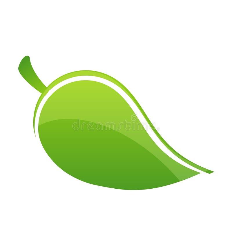 Limpie la hoja verde ilustración del vector