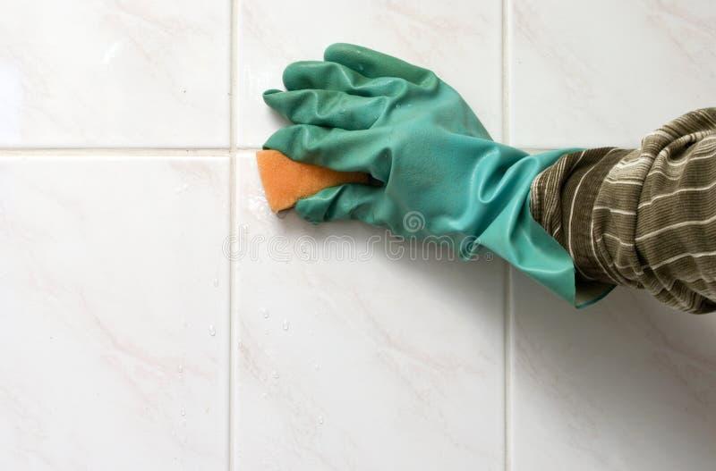Limpieza. fotos de archivo