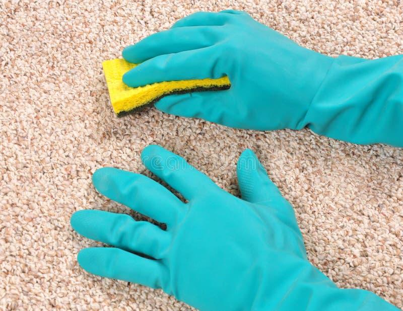 Limpieza de la alfombra foto de archivo