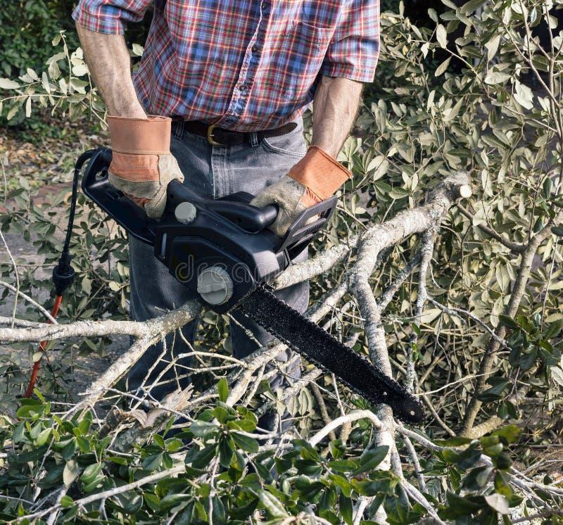 Limpieza de la yarda después de una tormenta foto de archivo libre de regalías