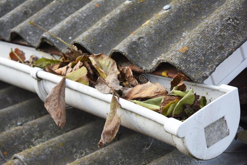 Limpieza del canal de la lluvia de las hojas en otoño Limpie sus canales antes de que limpien su cartera Limpieza del canal de la imagen de archivo