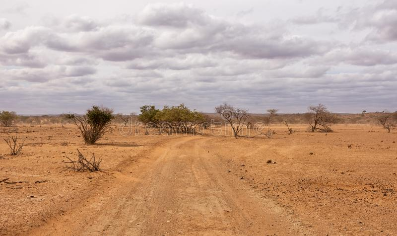 Limpopo Dirt Track. A dirt track in Limpopo province, South Africa stock image