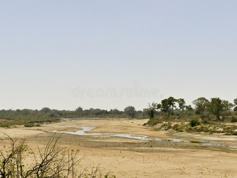 Limpopo river crossing the desert landscape of Mapungubwe Nation. Al Park, travel destination in South Africa. Braided Acacia and huge Baobab trees with red royalty free stock photos