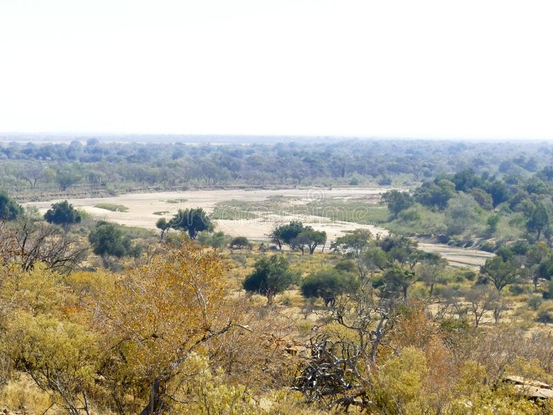 Limpopo river crossing the desert landscape of Mapungubwe Nation. Al Park, travel destination in South Africa. Braided Acacia and huge Baobab trees with red stock images