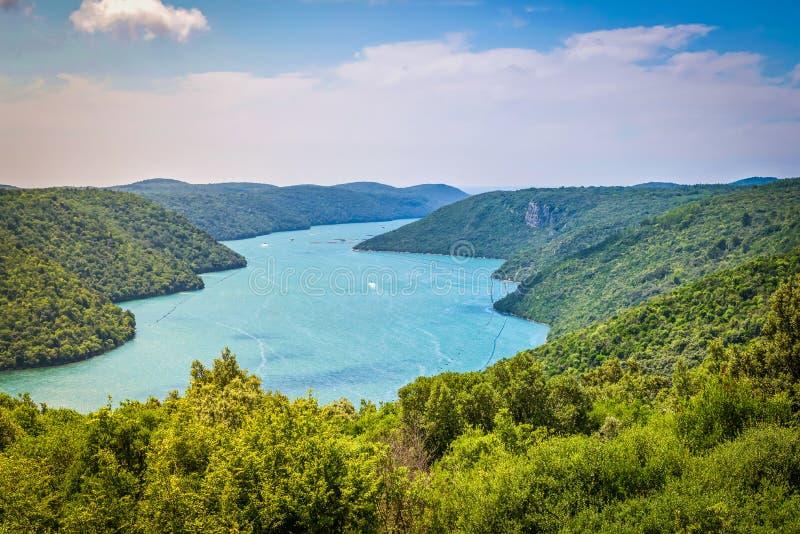 Limski运河在罗维尼附近也叫Limski海湾在伊斯特拉半岛 亚得里亚海,克罗地亚 免版税图库摄影