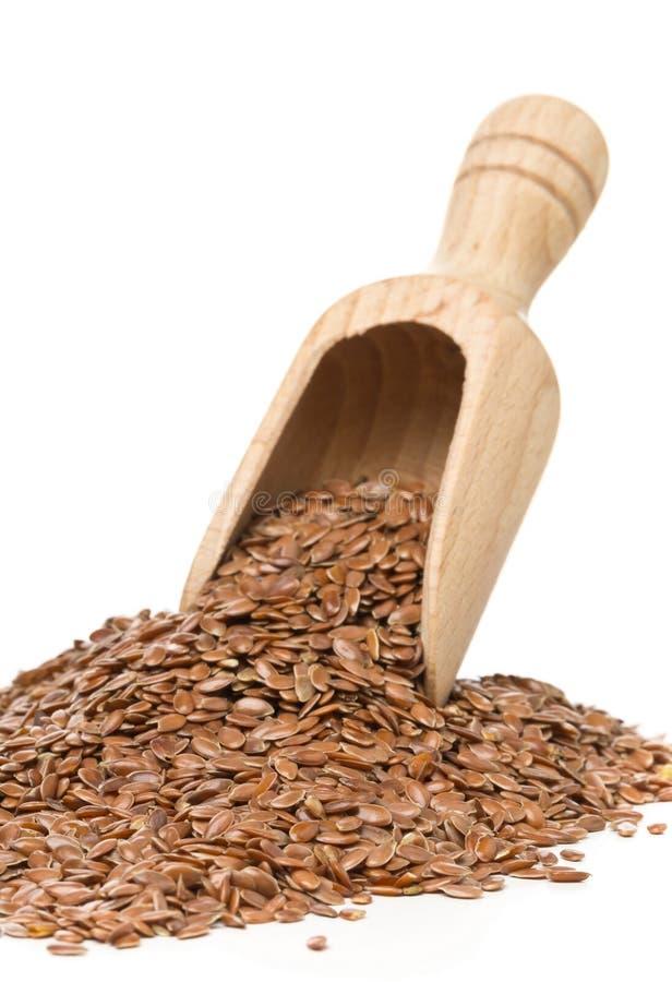 Lin oléagineux ou graine de lin cru et non-traité dans le scoop en bois images stock