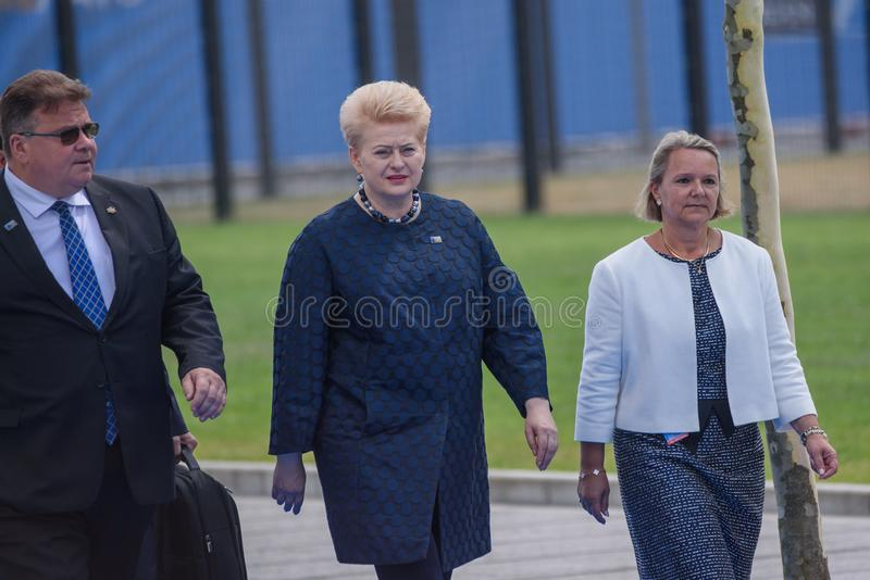 Linas Linkevicius l, министр иностранных дел Литвы и Dalia Grybauskaite c, президент Литвы стоковые изображения rf