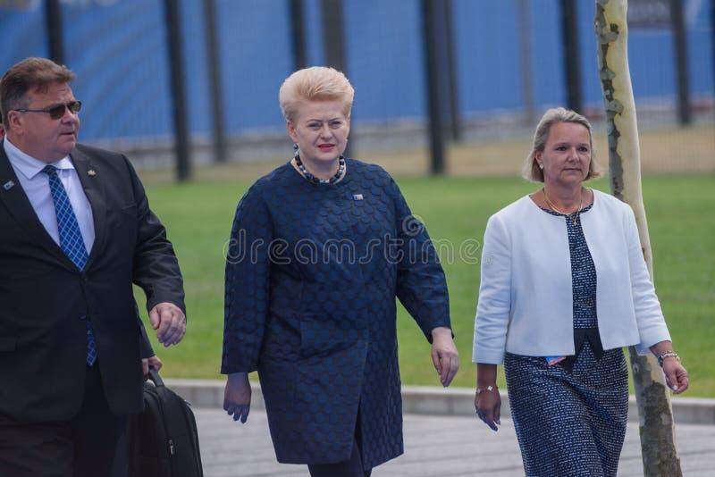 Linas Linkevicius L, ministro de asuntos exteriores de Lituania y Dalia Grybauskaite C, presidente de Lituania imágenes de archivo libres de regalías